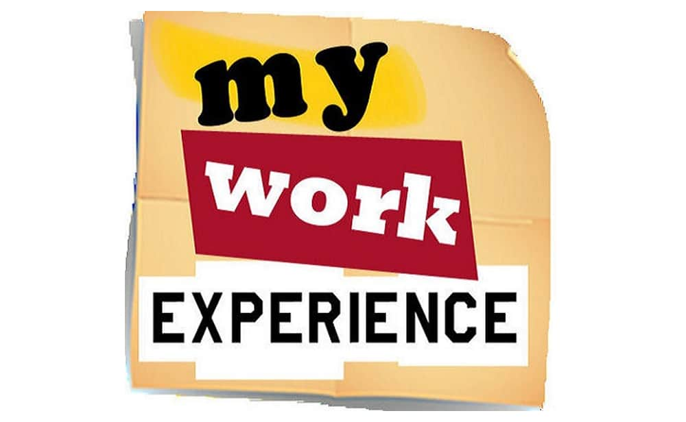 More Work Experience Achievements